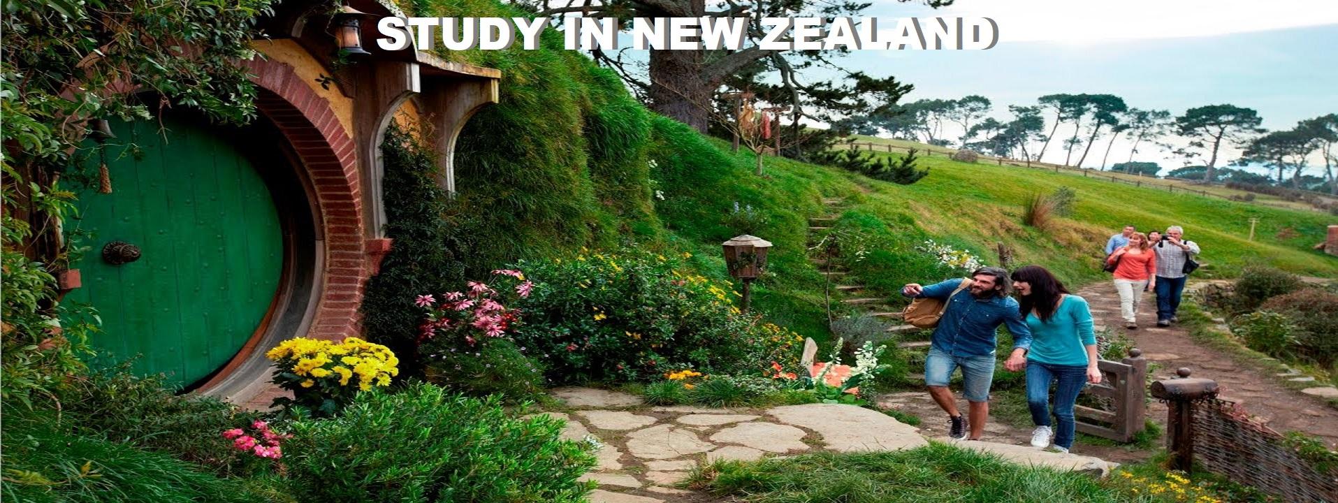 New Zealand study visa consultant Delhi | student visa consultant Delhi NCR | study abroad consultants Delhi NCR | Abroad Education Consultants Delhi NCR | Best study abroad consultants Delhi NCR